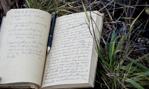 Joanne_the_Poet_Book